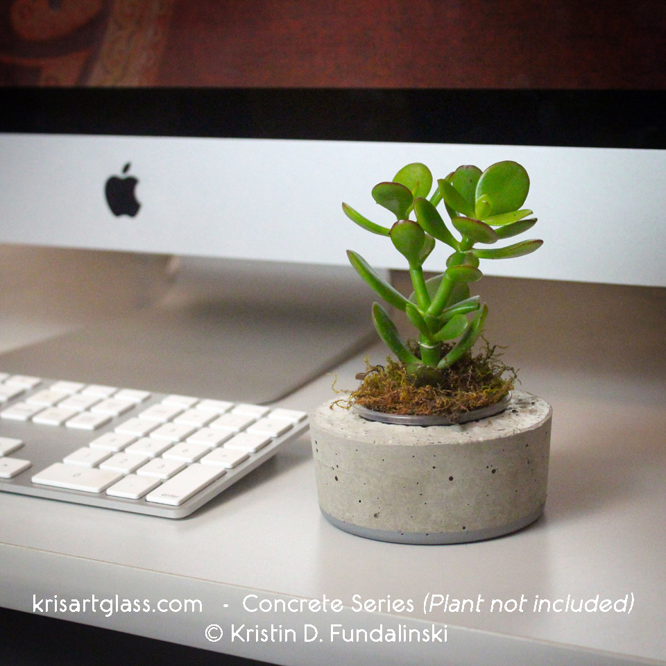 Top 5 Reasons for Having Desk Plants