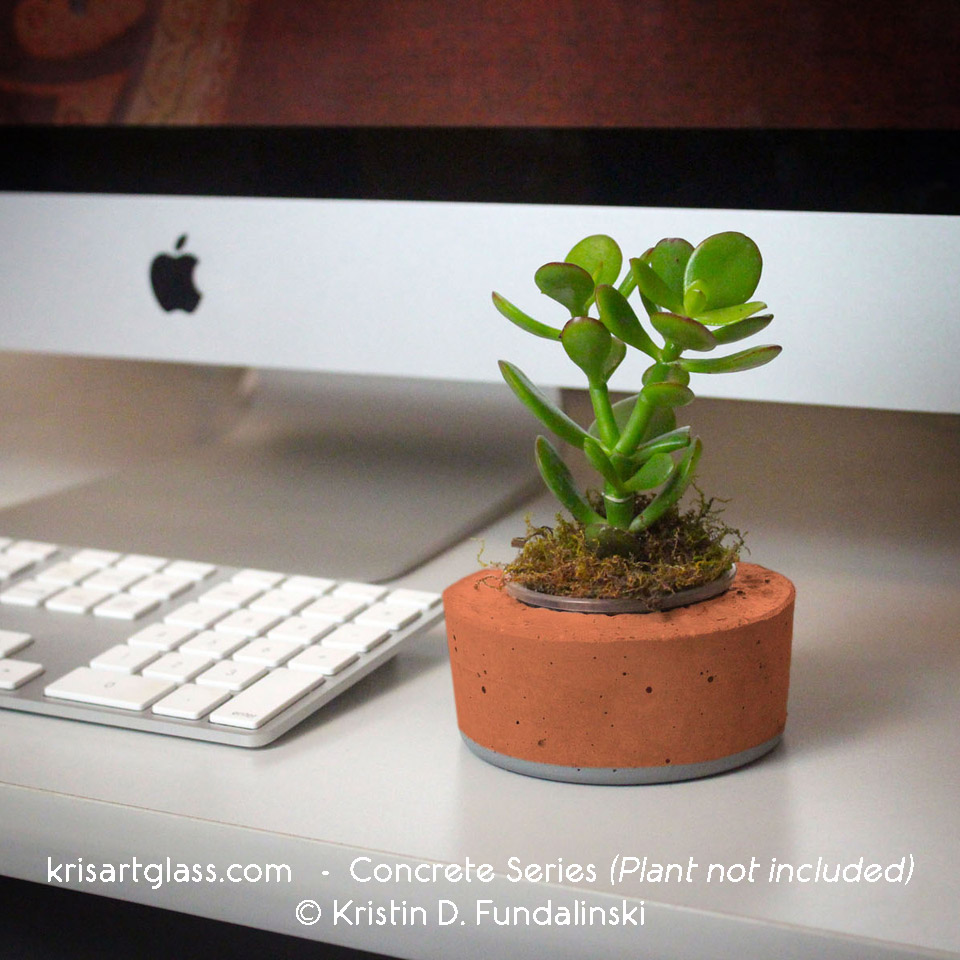 Top 5 Reasons For Having Desk Plants Kris Art Glass